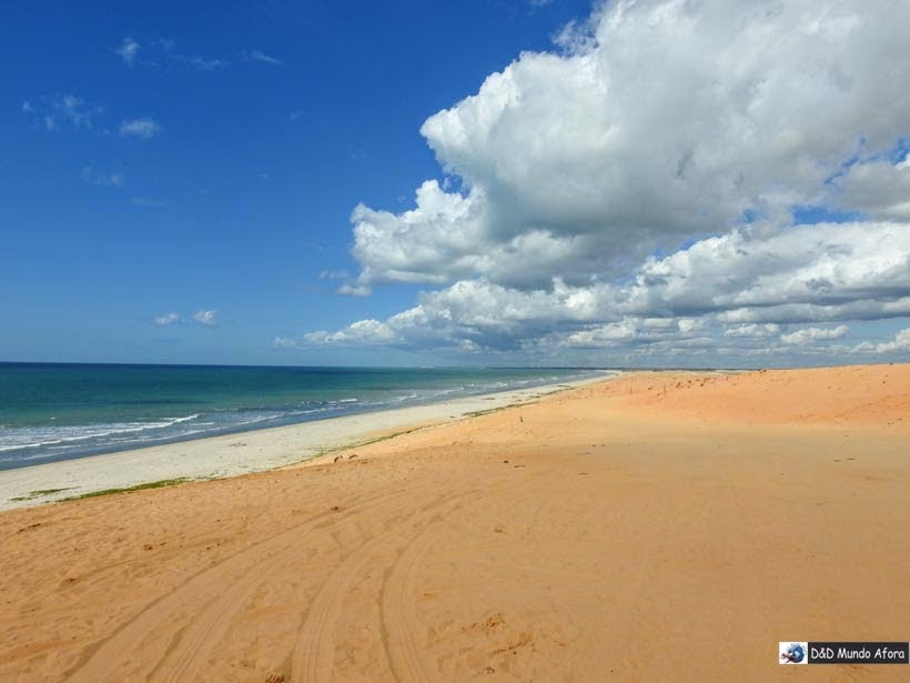Praia do Preá - Passeio de um dia em Jericoacoara - o que fazer e como chegar