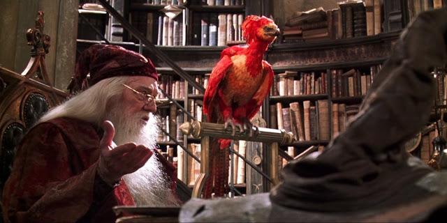 Фенксът Фоукс в кабинета на Дъмбълдор в Хари Потър и стаята на тайните