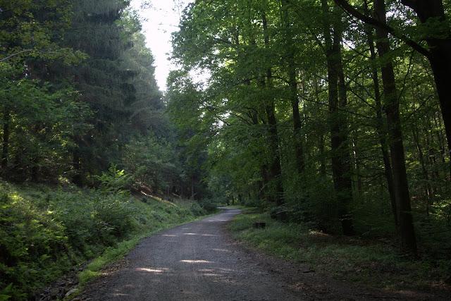 trasa na przełęcz Trzy Buki