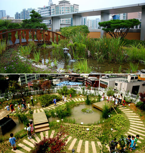 Holly Park: Urban Roof-top Gardens
