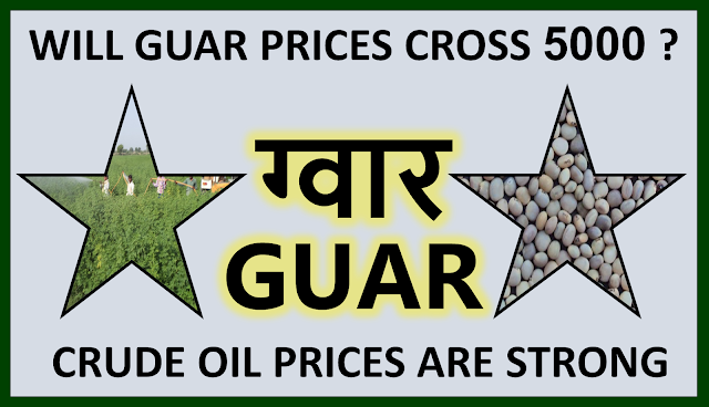 Why are Guar gum prices not getting support from strong crude oil price ?, Guar, guar gum, guar price, guar gum price, guar demand, guar gum demand, guar seed production, guar seed stock, guar seed consumption, guar gum cultivation, guar gum cultivation in india, Guar gum farming, guar gum export from india , guar seed export, guar gum export, guar gum farming, guar gum cultivation consultancy, today guar price, today guar gum price, ग्वार, ग्वार गम, ग्वार मांग, ग्वार गम निर्यात 2018-2019, ग्वार गम निर्यात -2019, ग्वार उत्पादन, ग्वार कीमत, ग्वार गम मांग, Guar Gum, Guar seed, guar , guar gum, guar gum export from india, guar gum export to USA, guar demand USA, guar future price, guar future demand, guar production 2019, guar gum demand 2019