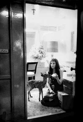audrey hepburn rare photos