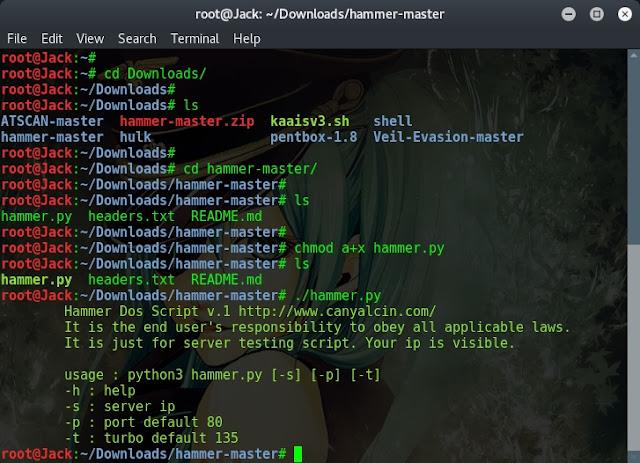 Cara DDoS dengan Hammer Script di Kali Linux