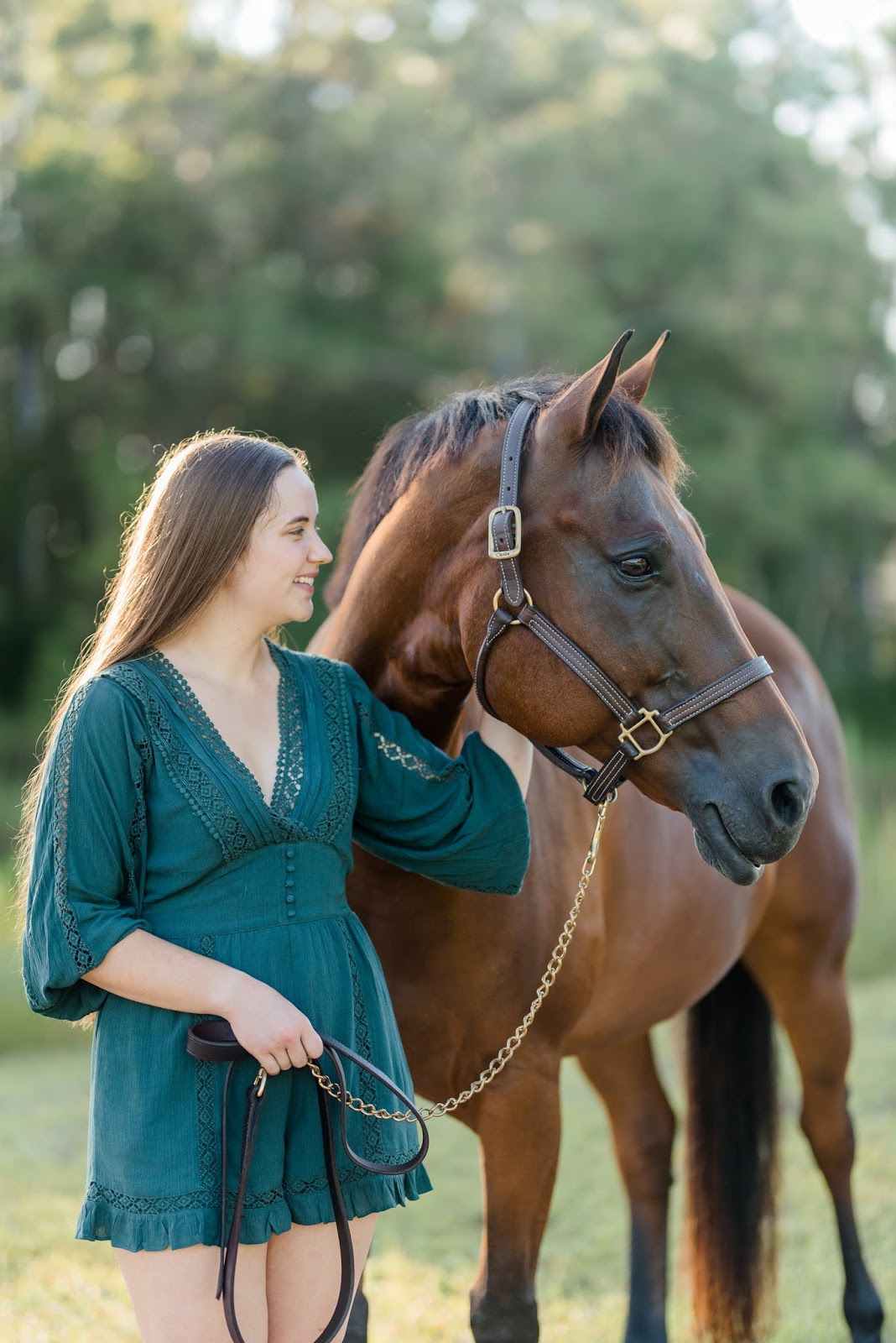 Brunette girl with brown quarter horse