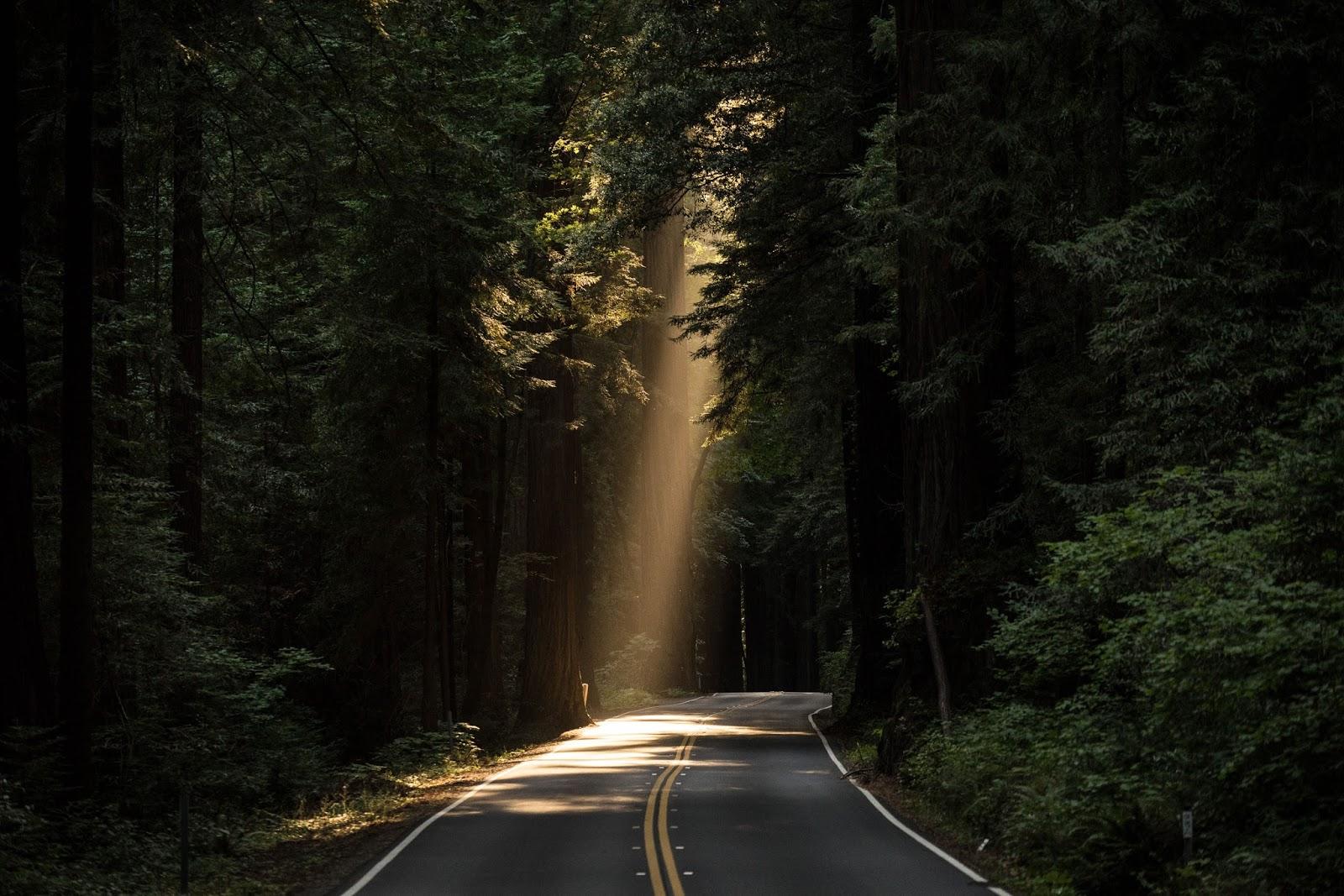 Camino éxito Francisco Alcaide y Tony Robbins