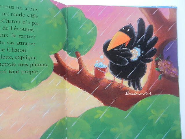 La pluie, ça sert à quoi ? (Présentation & Avis)(Chut, les enfants lisent #15)