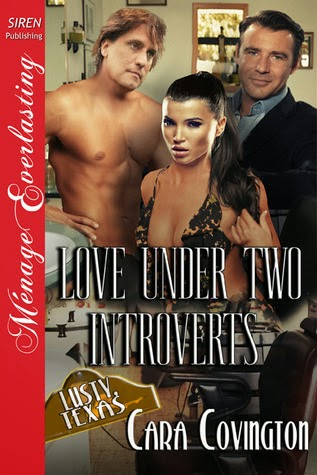 https://www.goodreads.com/book/show/22063370-love-under-two-introverts