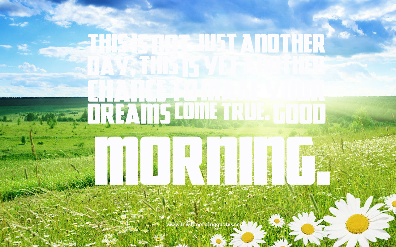 dreams come true in morning