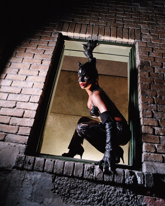Catwoman 2004 full movie free-6650