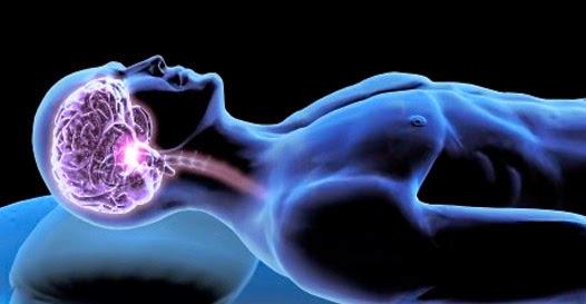 coisas que o cérebro faz enquanto dormimos
