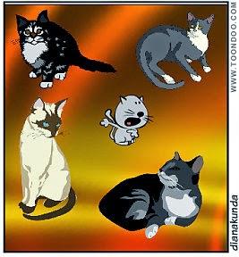 Kundalini Pisica In Vis