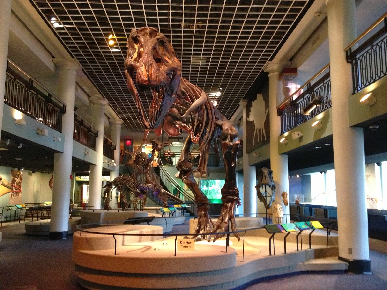Drexel University Natural History Museum