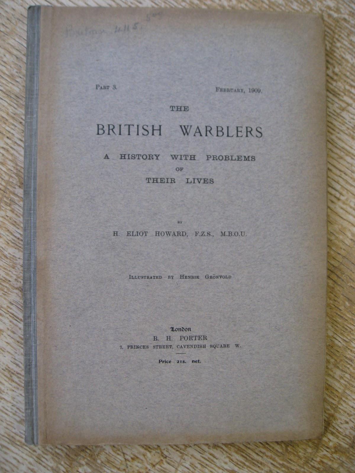 Art 1909 British Warblers Print Female Chiff Chaff ~ GrÖnvold