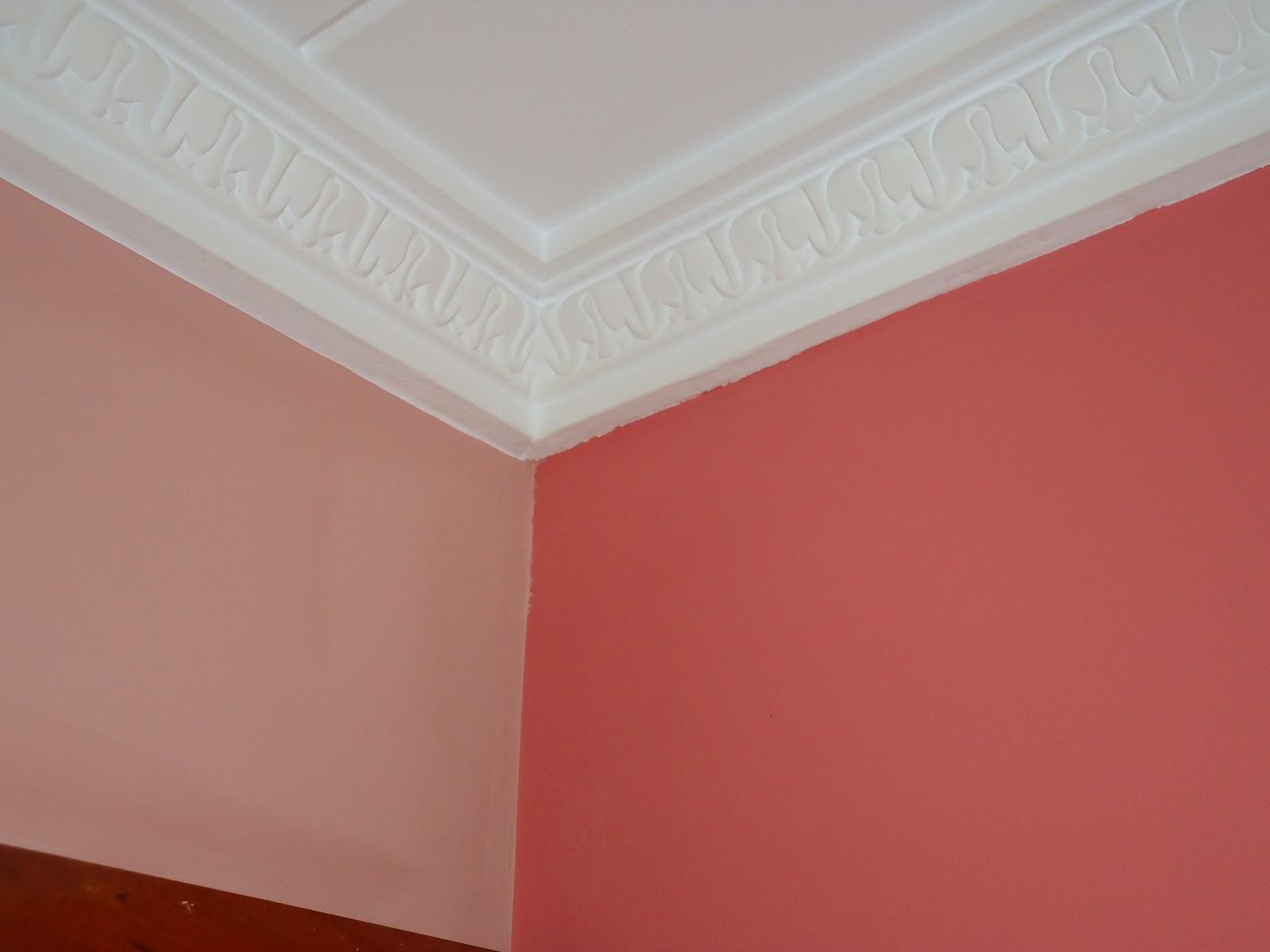 Resaltar techo de paredes for Terminaciones de techos interiores