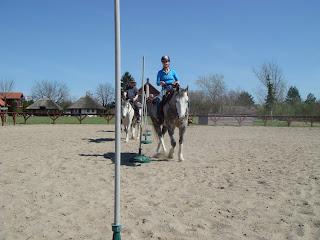 El Bronco, Riitta Reissaa, Horsexplore, Unkari, lännenratsastus
