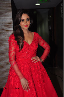 Actress Model Parul Yadav Stills in Red Long Dress at South Scope Lifestyle Awards 2016 Red Carpet  0080.JPG