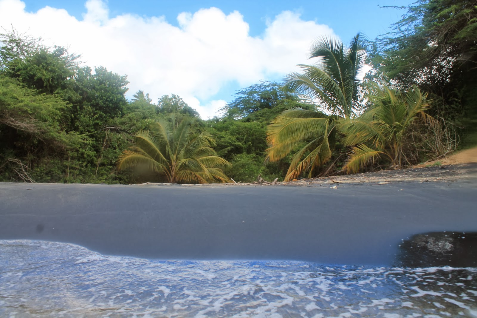 Black Beach on Vieques | Lindsay Eryn