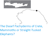 http://sciencythoughts.blogspot.co.uk/2012/05/dwarf-pachyderms-of-crete-mammoths-or.html