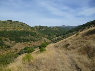 Descenso hacia el Arroyo de Sabugo