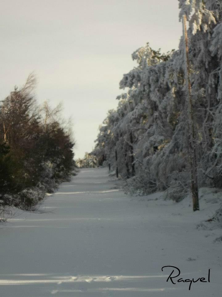 nieve en pedrafita do cebreiro