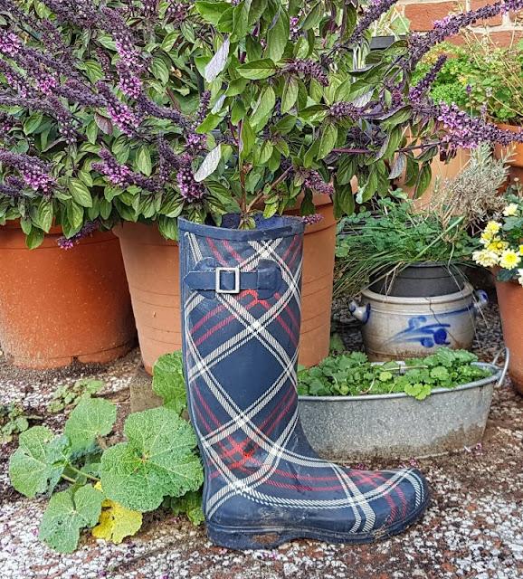 DIY: Schnell mal einen Stiefel bepflanzen. Kräuter oder Blumen könnt Ihr einfach in einen kaputten Gummistiefel topfen.