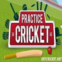 Play Practice Cricket Game