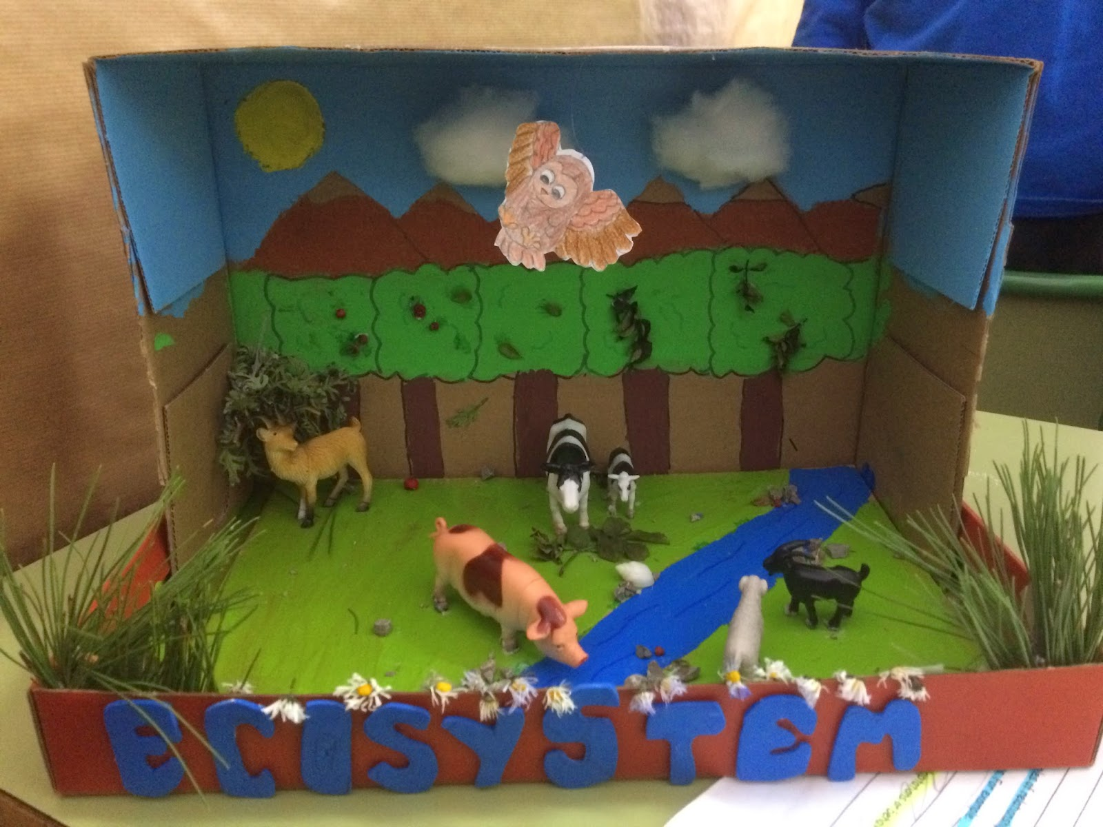 Science Is Fun Science Projects 6th Grade