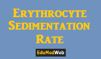 Erythrocyte-Sedimentation-Rate