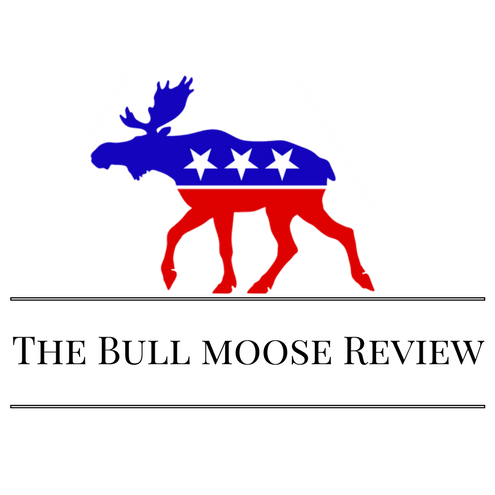 The Bull Moose Review: Guest Post / Write For Us