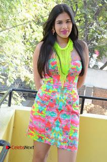 Telugu Actress Prasanna Stills in Short Dress at Inkenti Nuvve Cheppu Press Meet Stills  0059.JPG