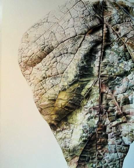 Catalpa by Jessica Rosemary Shepherd