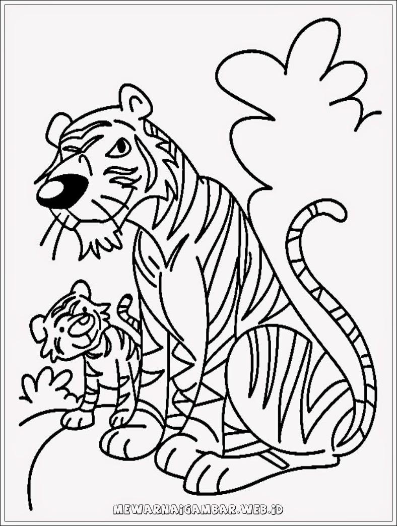 mewarnai gambar macan