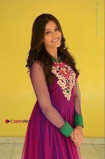 Actress Pooja Jhaveri Latest Stills in Purple Salwar Kameezt at Dwaraka Success Meet  0089.JPG