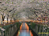 20 Most Beautiful Sakura Flower View Places in Japan