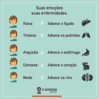 Ilustração descrevendo Suas Emoções e as Enfermidades associadas - Fonte: osegredo.com.br