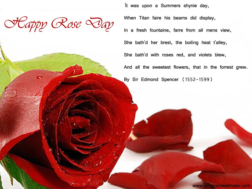 happy rose day 2017 images with love quote