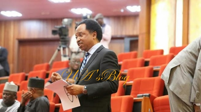 BREAKING: APC suspends Senator Shehu Sani