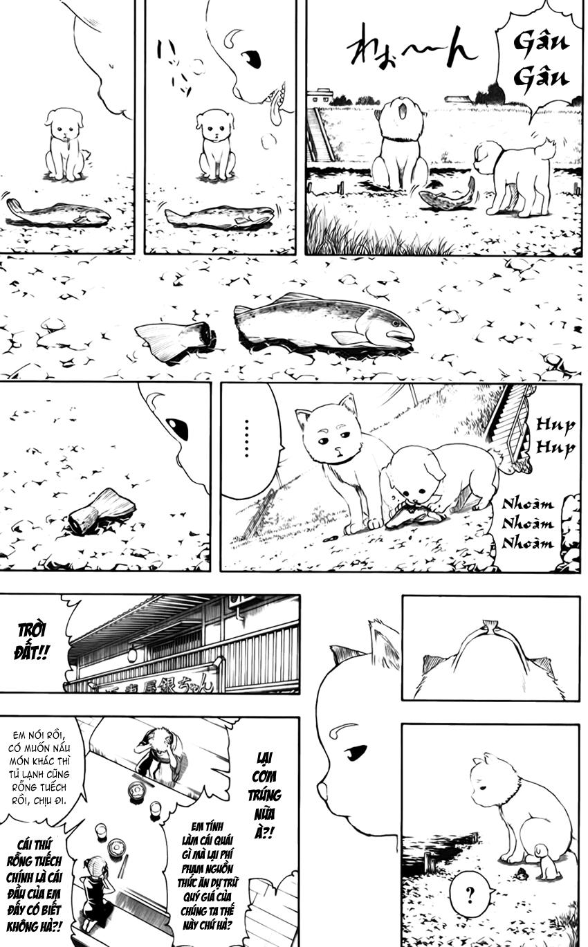 Gintama Chap 401 page 10 - Truyentranhaz.net