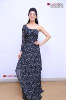 Telugu Actress Richa Panai Stills in One Shoulder Floral Long Dress at Rakshaka Bhatudu Movie Interview  0074.JPG