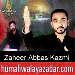 https://www.humaliwalyazadar.com/2018/09/zaheer-abbas-kazmi-nohay-2019.html