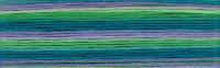 мулине Cosmo Seasons 8079, карта цветов мулине Cosmo