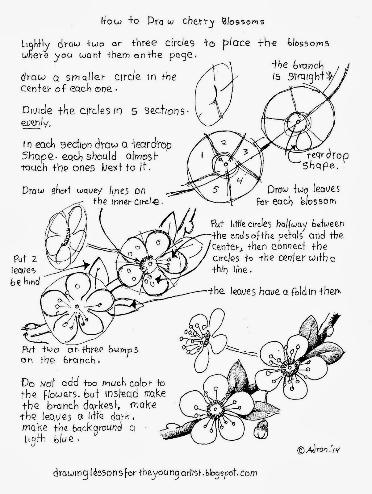 How To Draw Worksheets For The Young Artist How To Draw Cherry Blossoms Free Drawing Worksheet