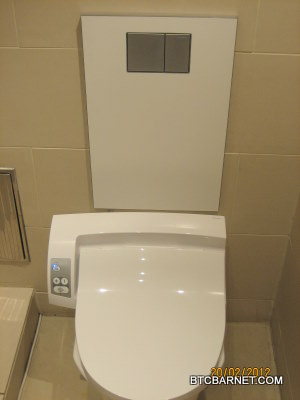 Sensational Bathroom Trading Barnet Which Toilet Bidet Combo Should I Dailytribune Chair Design For Home Dailytribuneorg