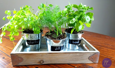 DIY Indoor Galvanized Garden Planters