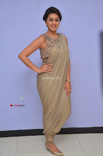 Nikki Galrani in Saree 096.JPG