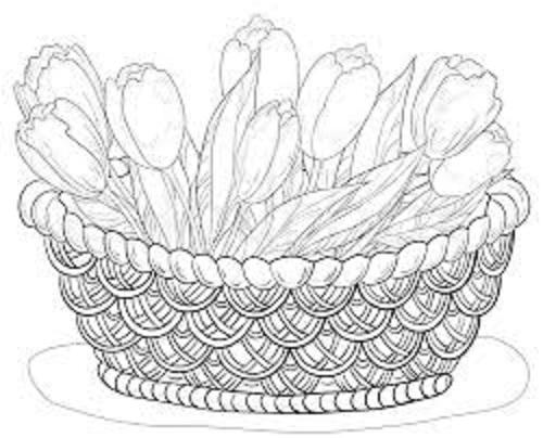 risco para pintura em tecido pano de prato tulipas
