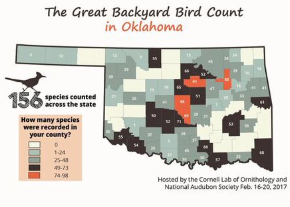 kxmx local news sequoyah county in top 10 for bird watchers