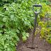 «Φύτρωσε» κρανίο στον κήπο του! Τι εξήγηση έδωσε η σύζυγός του όταν τη ρώτησε για τα οστά