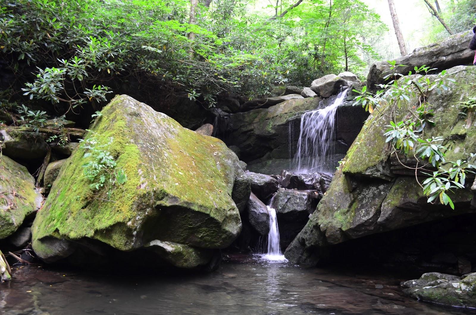 National Park Traveler ...: Trillium Gap Trail - Grotto Falls